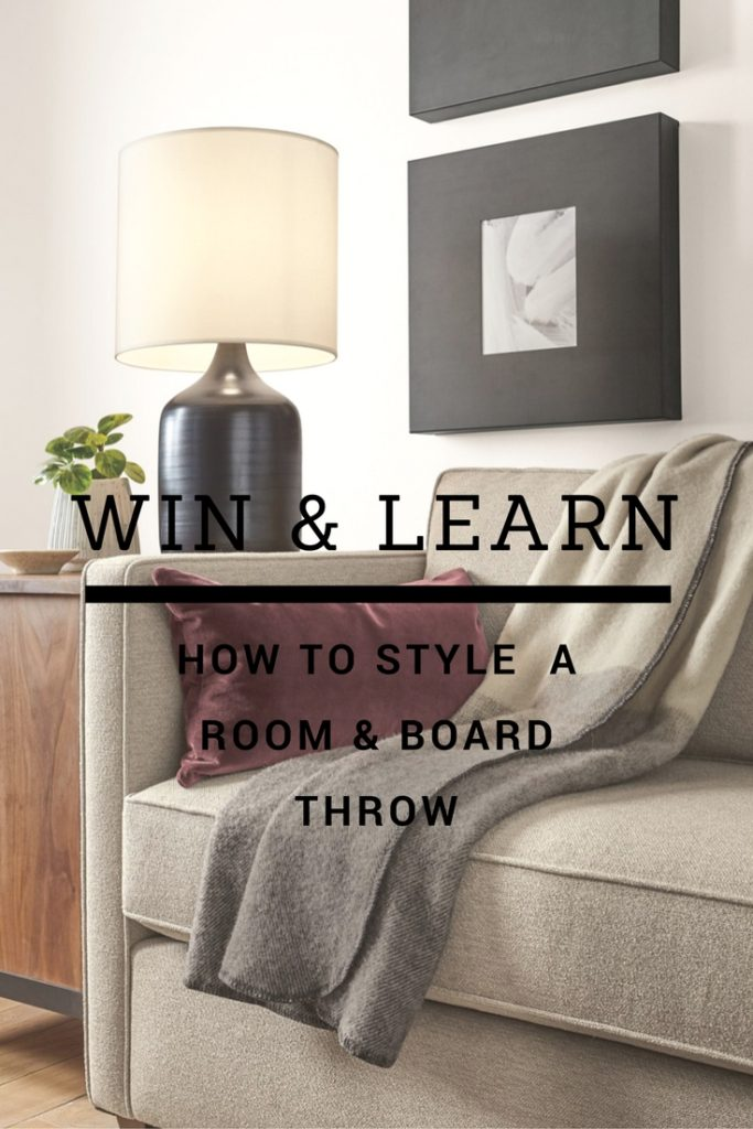 room-and-board-throw